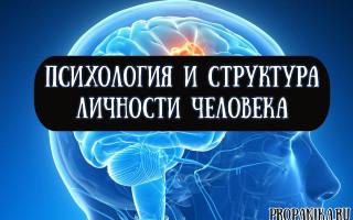 Психология и структура личности человека