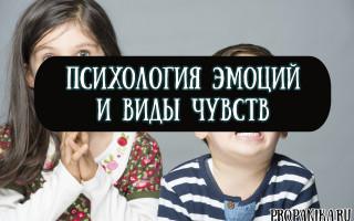 Психология эмоций и виды чувств