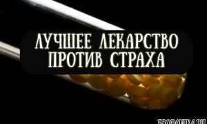 Лучшее лекарство против страха