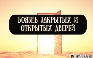 Откуда берется и как лечить боязнь открытых и закрытых дверей?