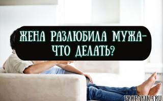 Что делать, если жена разлюбила мужа — советы психолога