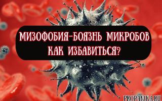 Как называется боязнь микробов, и как избавиться от мизофобии?